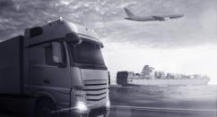 Exporters, Importers & Distributors
